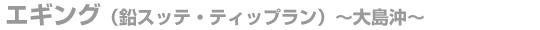 エギング(鉛スッテ・ティップラン)大島沖の料金